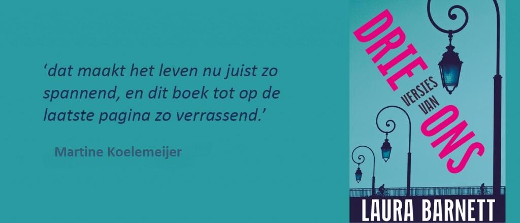 Ik schrijf nooit boekrecensies - Martine Koelemeijer