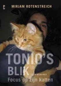 Tonio s blik. Focus op zijn katten
